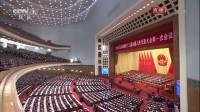 王岐山当选中华人民共和国副主席 180317