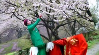 蓉城徒步摄影群〈灵岩山休闲踏青〉迷失