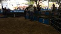 rodeo houston 带你来看休斯顿牛仔节
