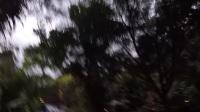 🇨🇷哥斯达黎加Costa Rica-Vlog