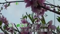 G调-桃花情-笛子独奏-笛同