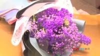 哈根达斯携手日本花艺大师,打造樱花绽放极致之美