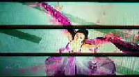 2011央视春晚宣传片2