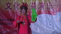 20180324寿光朱香花演唱《王汉喜借年》选段