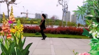 重庆芳儿广场舞  拥抱你离去