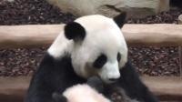 Yuan Meng - L'heure du LOLO 2