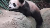 Yuan Meng- Je vais au lit