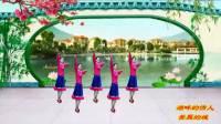 苏北君子兰广场舞系列--334--湖畔的情人美丽的城