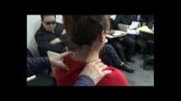 李茂发达摩108正骨治疗颈椎手法视频