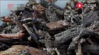 舌尖上的中国;梅菜扣肉是老广餐桌上不可或缺的美食