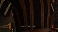 【老游新玩】巫师3狂猎03 旧爱新欢【少帅实况都是坑 巫师3全剧情】