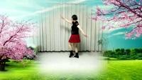 莲芳姐广场舞《水月亮》编舞:凤凰六哥