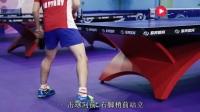 谭瑞午【手把手教你打乒乓】第一节 正手攻球