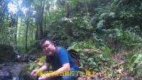 文玩大咖雷哥, 出游云南在森林里尽然出了这样尴尬的事!