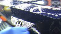 宾利 慕尚 完美装贴美国XPEL 隐形车衣 车漆保护膜实拍分享