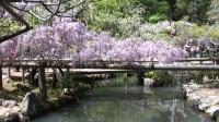 【Youtube】[旅天下] 日本・奈良(散步) 2018.4.19