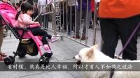 北京路步行街财厅前看表演(2018年4月21日星期六上午)(3分36秒)