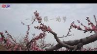 一段情缘一场梦  --- 冷漠&姜姿伢(卡拉OK双声道)