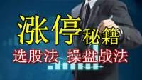早盘牛股建仓 股票入门短线选股实战系列