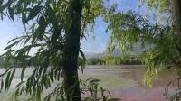 跟我一起逛湿地之四《烟雨鹭洲湿地公园》