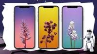 iPhone X被称为苹果最短命的手机,上市半年不到将停产