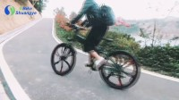 Magnesium alloy wheel folding mountain electric bike