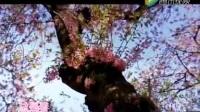 【潮韵唐诗宋词】第1期 姚璇秋倾情演绎潮语版《春日》 万紫千红总是春