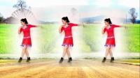 馨蕊百合广场舞《海鸥飞》2018龙梅子最新歌曲,广场舞更好看