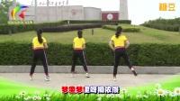 杨丽萍广场舞 第二套丽萍美体健身操第二节 背面