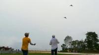 金沙洲风筝表演