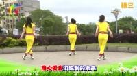 杨丽萍广场舞 第二套丽萍美体健身操第三节 背面