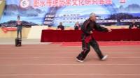 """衡水传统武学文化研究会""""五一""""名家名拳交流会 04 形意拳"""