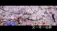 乐静-樱花醉(原版)红日蓝月KTV推介