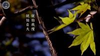 台南極樂寺餐後開示(有字幕) 2017.12.31 台灣台南極樂寺01