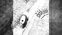 峨嵋行- 3月8日 我愛熊貓,有獎徵答
