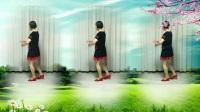 莲芳姐广场舞《白天的月亮》32步
