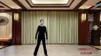 応子广场舞绣满霞光的蒙古袍