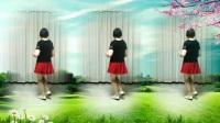 莲芳姐广场舞《没钱的日子》32步
