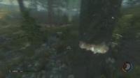 我在老戴在此《森林》02 第二夜,野人,老戴欢迎你截了一段小视频
