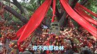 春游广西:桂林印象 我们是怎么游玩的?