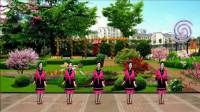 苏北君子兰广场舞系列--338--花城姑娘