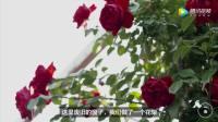 上海夫妻不买房,把4000㎡垃圾站改成花园房,日子过得像神仙