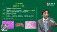 贺银城2018执业医师及助理医师考试课程【病理学】 (1)