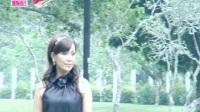 杨丽莎 红睡莲 伴奏 80年代记忆国语经典怀旧精选时代金曲流行老歌