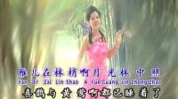 湛爱铃 雁儿在林梢 伴奏 80年代记忆国语经典怀旧精选时代金曲流行老歌