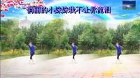 枫叶正红广场舞【燕双飞】字幕;演示;枫叶正红