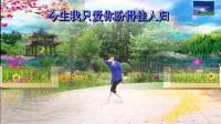 枫叶正红广场舞【燕双飞】字幕;演示;枫叶正红_01
