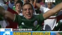 墨西哥:首都轻微地震 或因球队进球