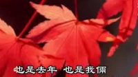 邓丽君 枫叶飘飘 伴奏 80年代记忆国语经典怀旧精选时代金曲流行老歌