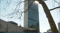 联合国助理秘书长:促成巴以恢复和谈努力尚未取得突破